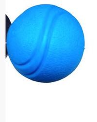 Brinquedo Dog  Mordedor Bola que Pula P (azul / Pequeno)