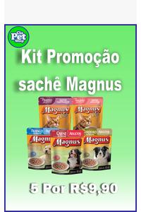 kit-promocao-sache-magnus-c5-un-85-g