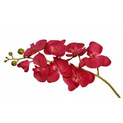 orquidea-x8-100cm-toque-real-bordo