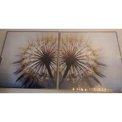quadro-dente-de-leao-80x160