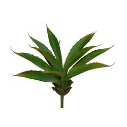 suculenta-agave-26cm