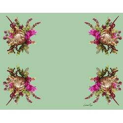 jogo-americano-protea