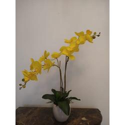 arranjo-orquidea-amarela