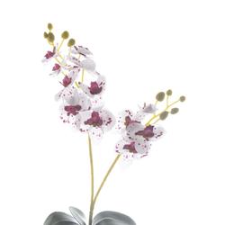 orquidea-x2-galhos-com-12-cabecas-48cm